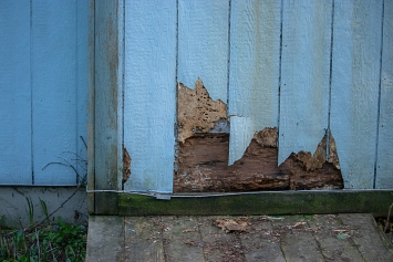 Why Replace Your Siding?